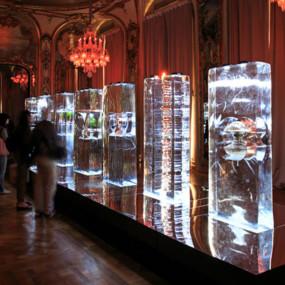 Baccarat, Designer's Days, Paris